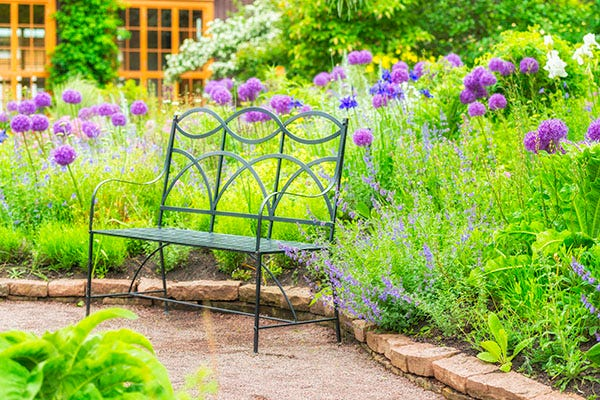 A green metal bench in the middle of a garden with purple flowers