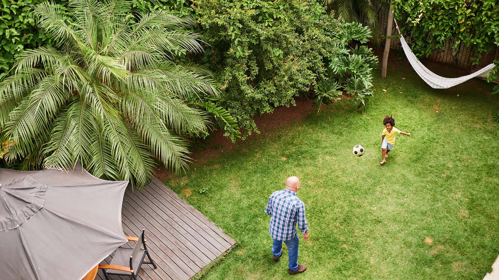 stop attracting insects to your yard